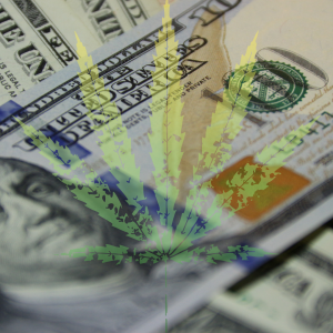 cannabis marijuana leaf over cash