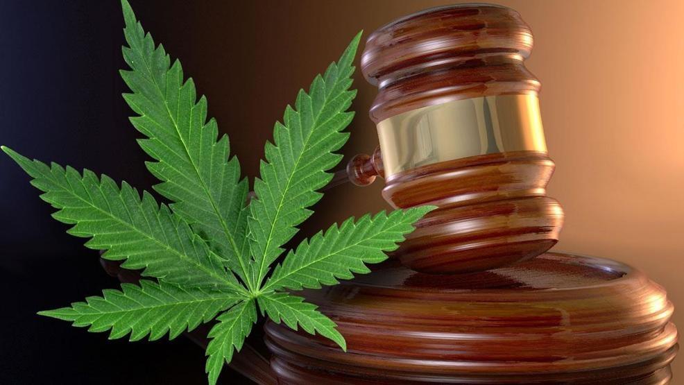 gavel and marijuana leaf