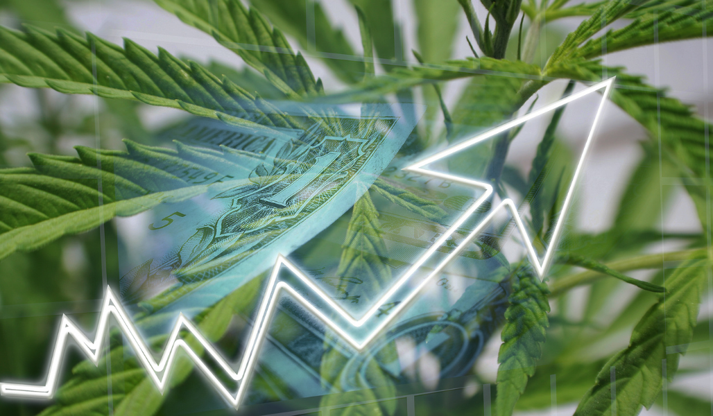 KPIs for Cannabis Businesses